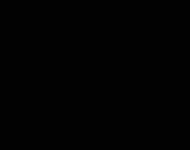Dachcheck_klein